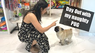 Taking My Pug Puppy for a SPA | Cutest and Funniest Pug Video| Garima's Good Life