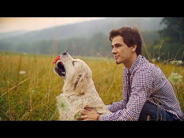 Frozen Poppyhead - Falko (OFFICIAL MUSIC VIDEO)