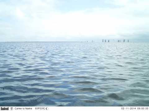 Lake Urema floodplain in Gorongosa National Park, Mozambique