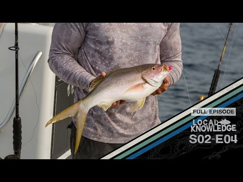 Local Wreck Fishing Key West Florida - S02 E04 Grab Bag