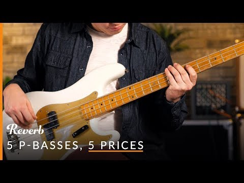5 Precision Basses, 5 Prices: What's the Difference?   Reverb