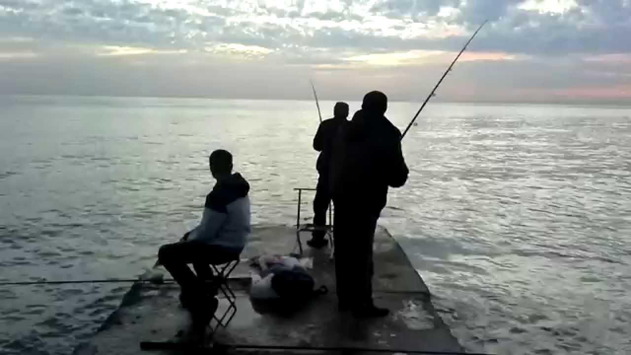 рыбалка в сочи на август