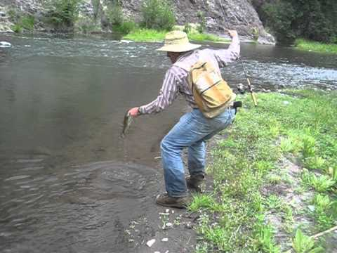 Gila wilderness small mouth bass youtube for Gila river fishing
