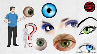 1 To 25 amazing facts of eyes in Hindi