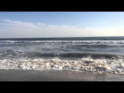 Santa Monica California beach, ocean sounds, relaxing waves, blue sky-relaxing video