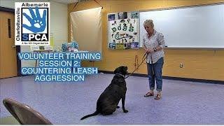 Volunteer Training - Session 2 - Leash Aggression