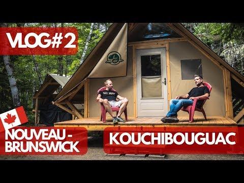 On a vu DES CENTAINES DE PHOQUES au Parc de Kouchibouguac - Nouveau-Brunswick - VLOG #2