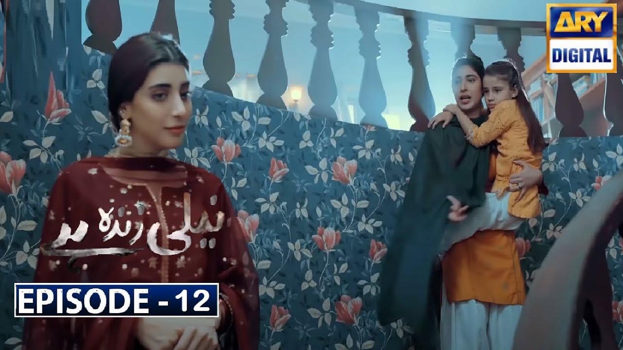 Neeli Zinda Hai Episode 12   Ary Digital Dramas