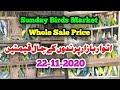Lalukhet Sunday Birds Market Jaal Price 22-11-2020