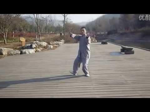 Chinese kungfu master / Shaolin kungfu, TaiJi