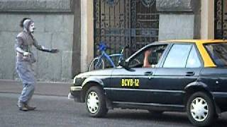 Mimo en Frontis de Municipalidad - Santiago de Chile