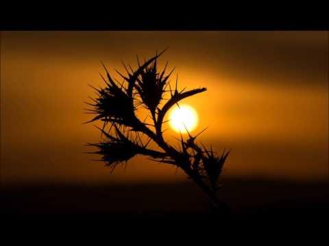Transcendent - A Deep Techno Mix