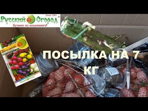 РУССКИЙ ОГОРОД\МЕГА ПОСЫЛКА С СЕМЕНАМИ И САЖЕНЦАМИ /