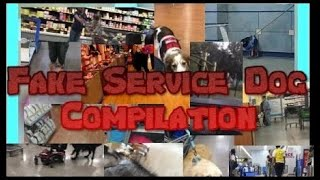 Fake Service Dog Compilation including clips from 15 videos!!!