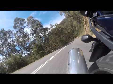 2014 Alpine Ride