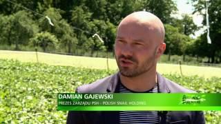 """Polish Snail Holding: AGROPASJA - """" Hodowla ślimaków"""", hodujslimaki.pl"""