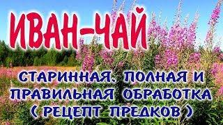 видео Производство Копорского чая (иван-чая)