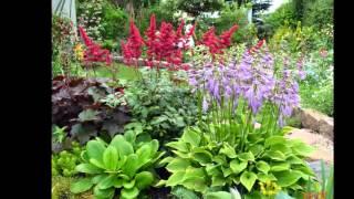 Цветы в саду. Слайд-шоу из фото(Сад С.Каревой., 2012-12-16T17:09:39.000Z)