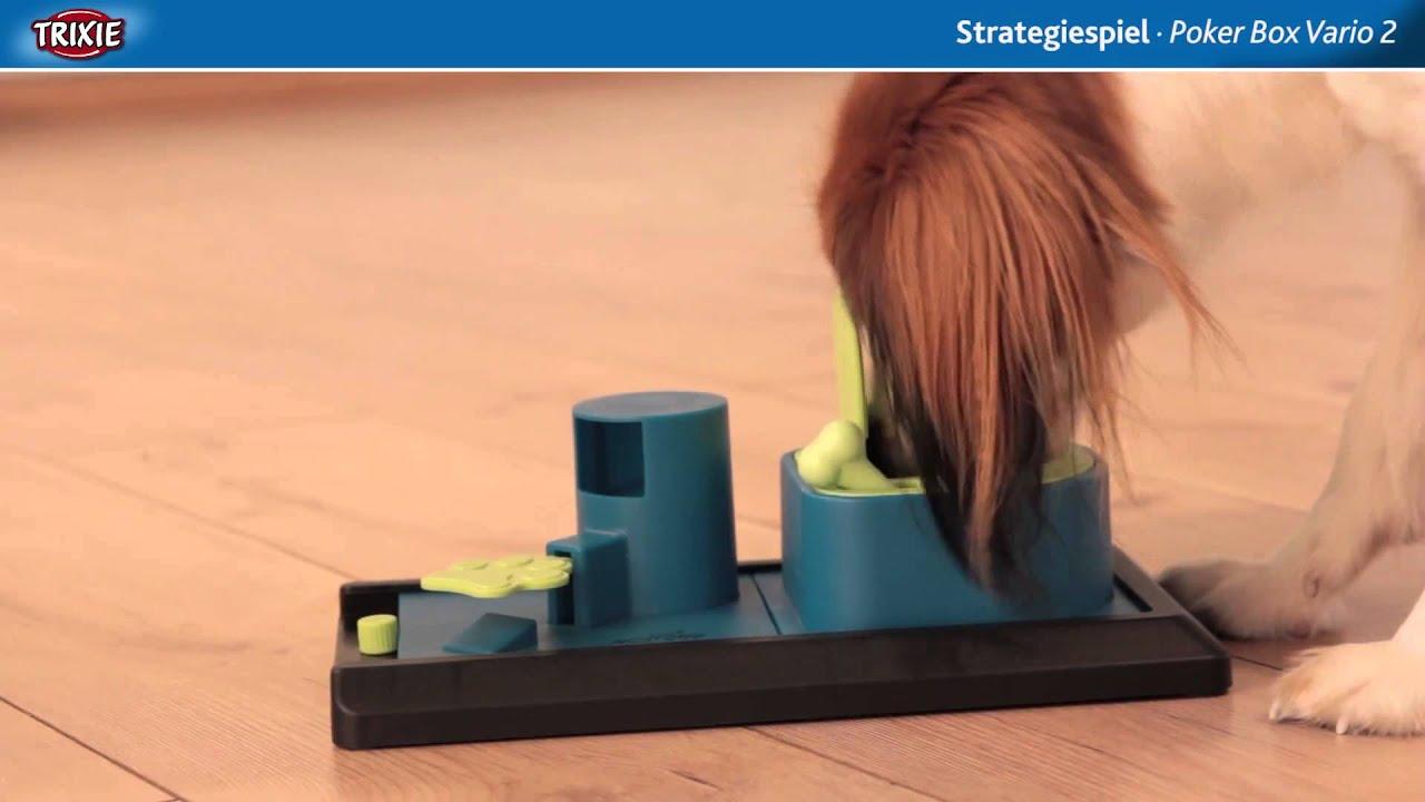 dog activity strategiespiel f r hunde poker box vario 2. Black Bedroom Furniture Sets. Home Design Ideas