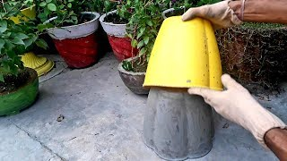 How to make a beautiful cement pot || upgrade your garden || DIY flower pot