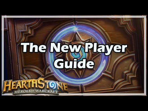 Best Hearthstone Players - YouTube