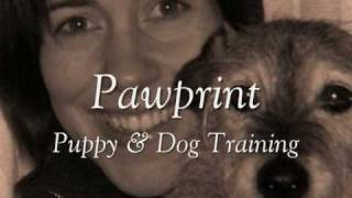 Pawprint Puppy And Dog Training