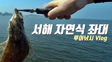 서해 자연식 좌대에서 전설의 물고기 광어를 만날 수 있을까?!