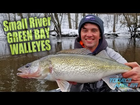 Small River GREEN BAY WALLEYES - Fly or Jig? - Todays Angler