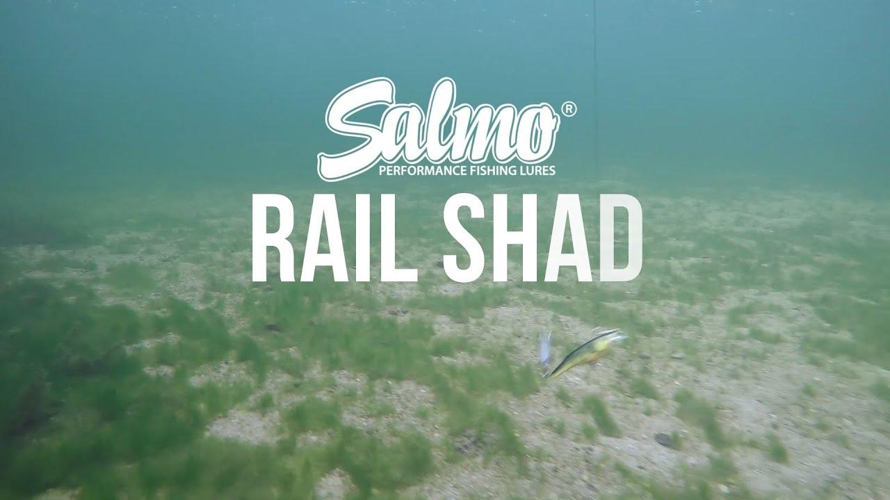 "Ice Perch RB6S-IP 2 3//8/"" 1//2 oz Ice Fishing Lure Salmo Rail Shad"