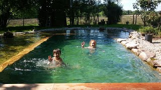 Schwimmteich selber bauen - Natural Pool - Organic Pool selfbuild