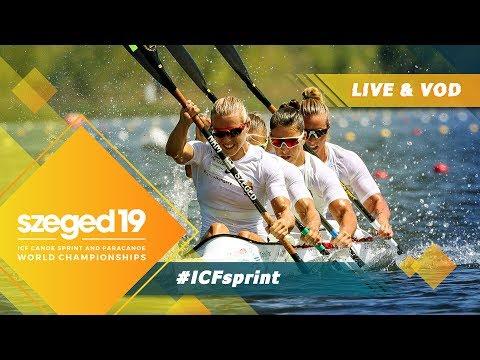 2019 ICF Canoe Sprint & Paracanoe World Championships Szeged Hungary / D4: Semis