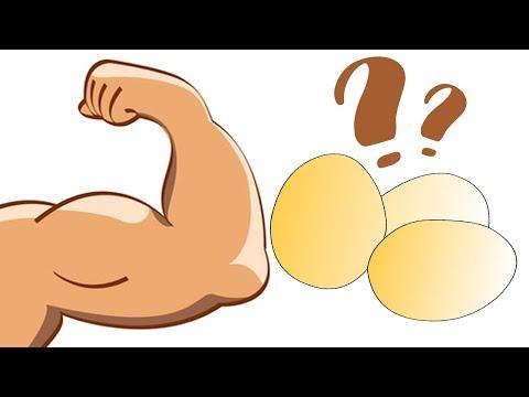 Почему яичный белок идеален для роста мышц