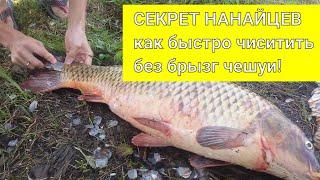 Как ПРАВИЛЬНО чистить ОГРОМНУЮ рыбу