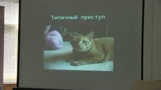 6 Бронхиальная астма у  кошек Бокарев А Н.mp4