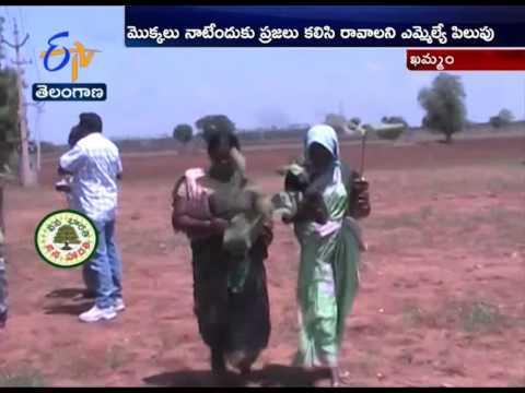 Haritha Haaram Program Enthusiastically Goes on in Khammam District