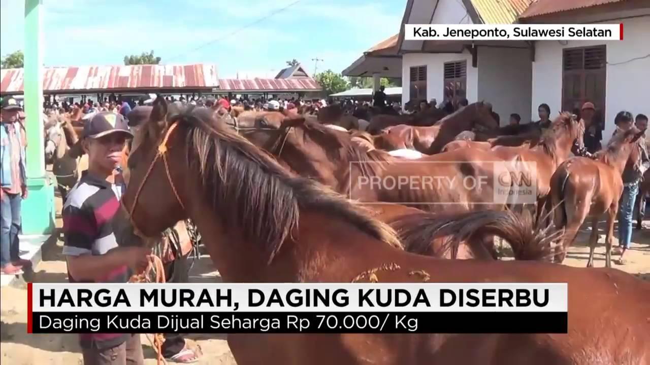 Daging Kuda Diserbu Jadi Pengganti Daging Sapi Yang Mahal Youtube