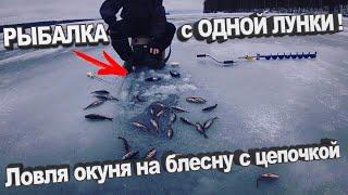 Рыбалка с одной лунки Ловля окуня на блесну с цепочкой Зимняя рыбала 2020