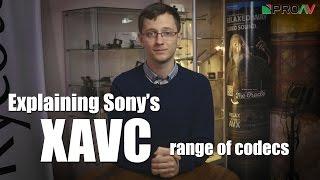 Explaining Sony's XAVC Codec's - XAVC-I, XAVC-L and XAVC-S