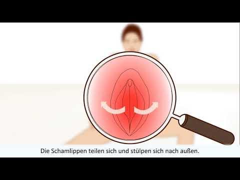 Der Weiblichen Orgasmus erklärt