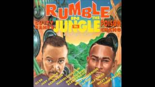 07. Poison Chang - Love The Woman (DJ Rap Remix) JFCD 002 (Jungle Fashion Records) 1995