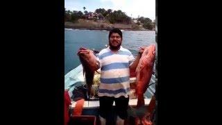 San Blas Nay. pesca de pargos en Puerto Chacala Nay.