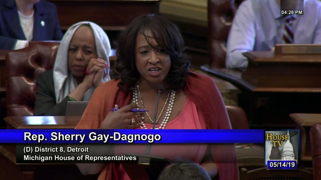 Rep  Sherry Gay-Dagnogo Speaks Against on Republican Attack on Reproductive  Health Care