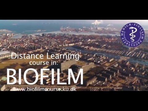 Online Biofilm Course -  Faculty of Health Sciences, University of Copenhagen