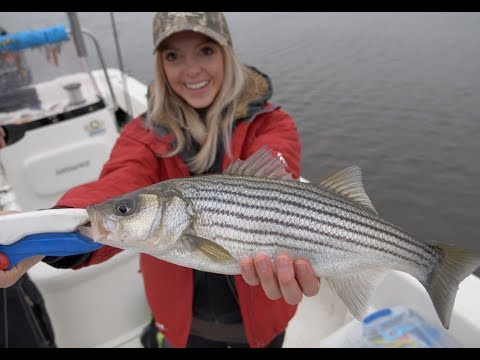 Smackin' The SPRING STRIPER RUN In NORTH CAROLINA - 4K