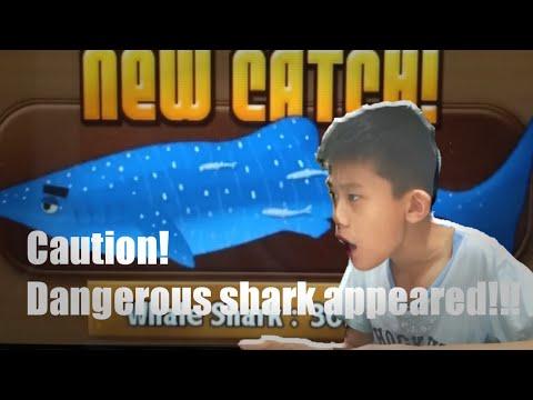 Catching Whale Shark !!! : Ninja Fishing, Something Weird Happened.......
