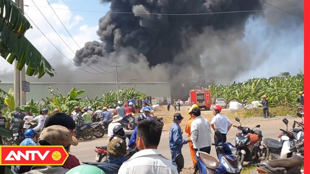 An ninh ngày mới hôm nay | Tin tức 24h Việt Nam | Tin nóng mới nhất ngày 24/08/2019 | ANTV
