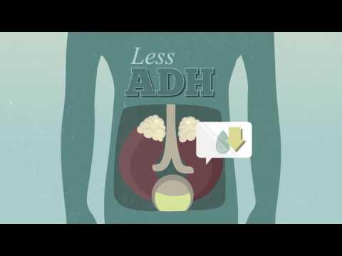 Анализ крови на гормоны щитовидной железы: какие анализы