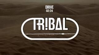 TroyBoi & Evil Needle - Drive