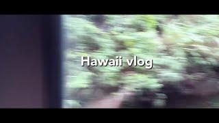 하와이 여행 브이로그/…
