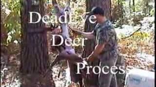 Deadeye Deer Process - Deer Processing Made Simple.